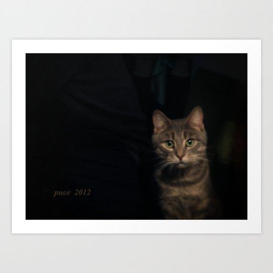 Boriss the cat Art Print
