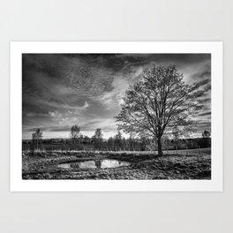 Timber X Art Print