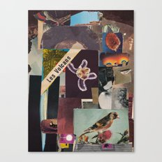 Zeisig Canvas Print
