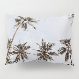 palm trees xiv / chiang mai, thailand Pillow Sham