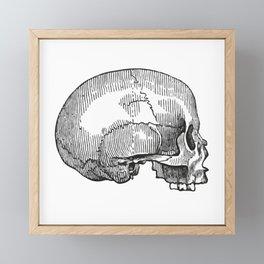 Skull 12 Framed Mini Art Print