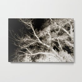 Surreal Forest 1 Metal Print