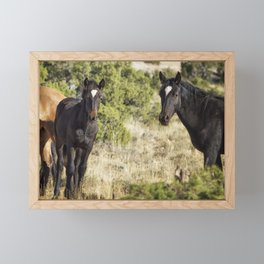 Family Resemblance - Orlando and Norma Jean - Pryor Mustangs Framed Mini Art Print