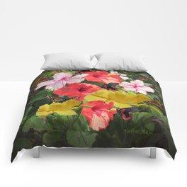 Hibiscus meeting Comforters