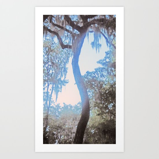 S is for Tree Art Print