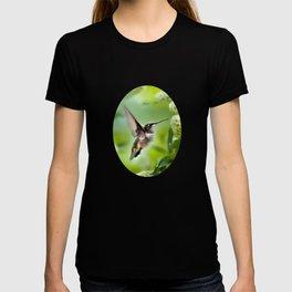 Hummingbird Love T-shirt