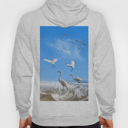 White Egrets in a Morning Hoody