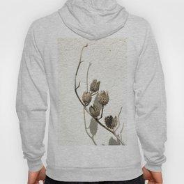 Dry plant Hoody