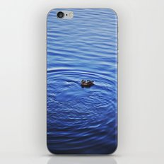 Duck Swimming in Central Park iPhone & iPod Skin