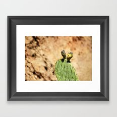 Cactus Fruit Framed Art Print