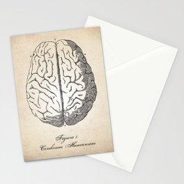 Human Anatomy Brain Art Print Stationery Cards