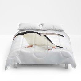 Gentoo Penguin Walking Through Snow Comforters