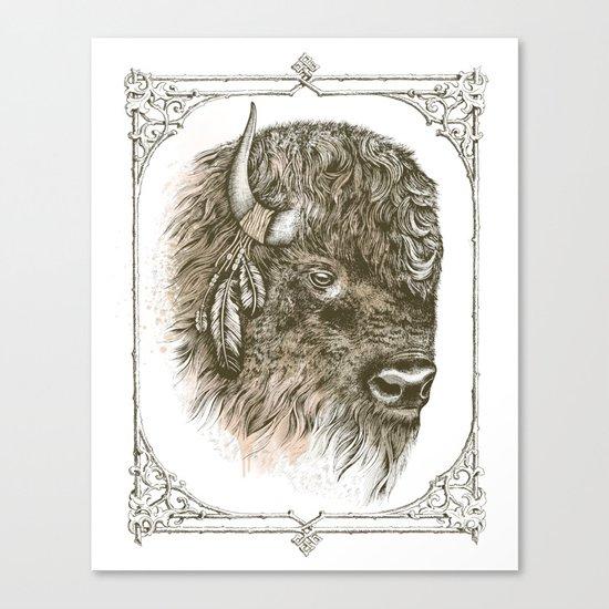 Portrait of a Buffalo Canvas Print