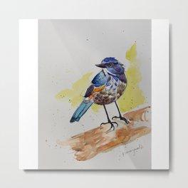 Himalayan Bluetail Bird- in watercolor Metal Print