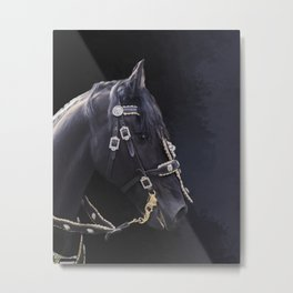 Friesian horse portrait Metal Print