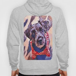 The Schnoodle - A Schnauzer Poodle Mix Breed Hoody