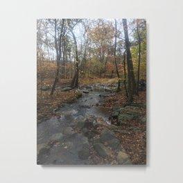 Quiet Autumn Creek Metal Print