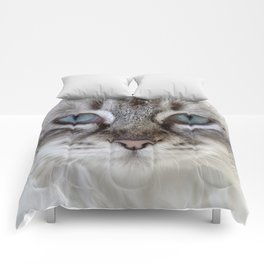 Cat with Blue Eyes Comforters
