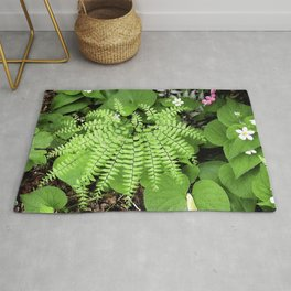 Maidenhair Fern, Adiantum Pedatum, And Friends Rug