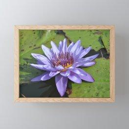 Water Lily Framed Mini Art Print
