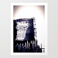 Roman Archaeological remains Art Print