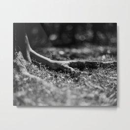Nook #1 - Fomapan Creative 200 (4x5 film) Metal Print