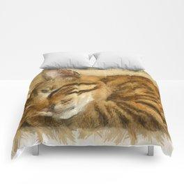 Let Sleeping Cats Lie Comforters
