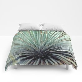 Agave Plant Comforters