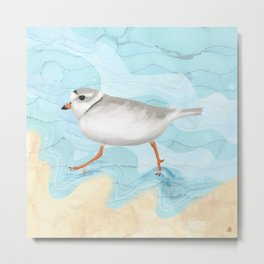 Piping Plover Running on the Beach Metal Print