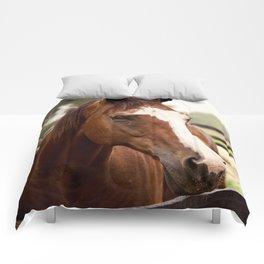 Coco Comforters