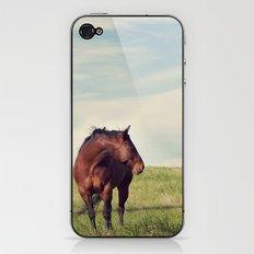 camera shy iPhone & iPod Skin