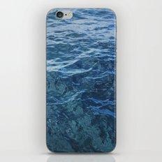 Florida Blues iPhone & iPod Skin