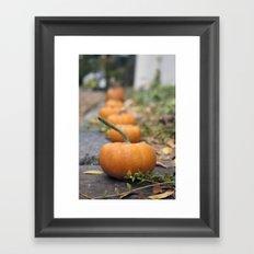 Pumkin Row Framed Art Print