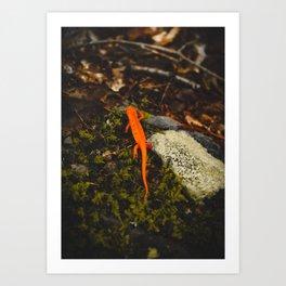 Neon Newt - Neon by Nature - @zekekitchen Art Print