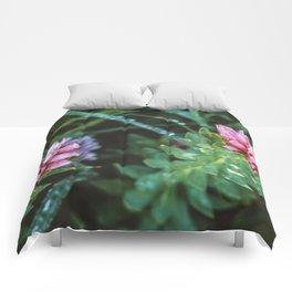 Dos Floras Comforters