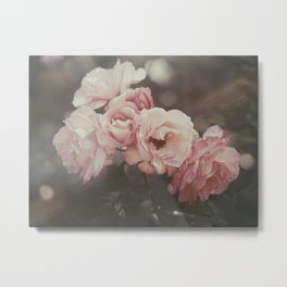 Aunt Mary's roses Metal Print