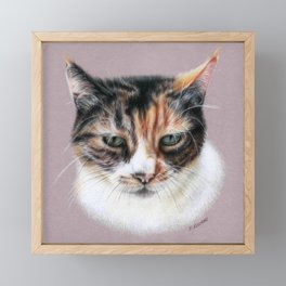 Cat portrait colored pencils Framed Mini Art Print