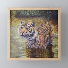 Sumatran Tiger in the Jungle Framed Mini Art Print
