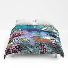 Dolphinius Comforters