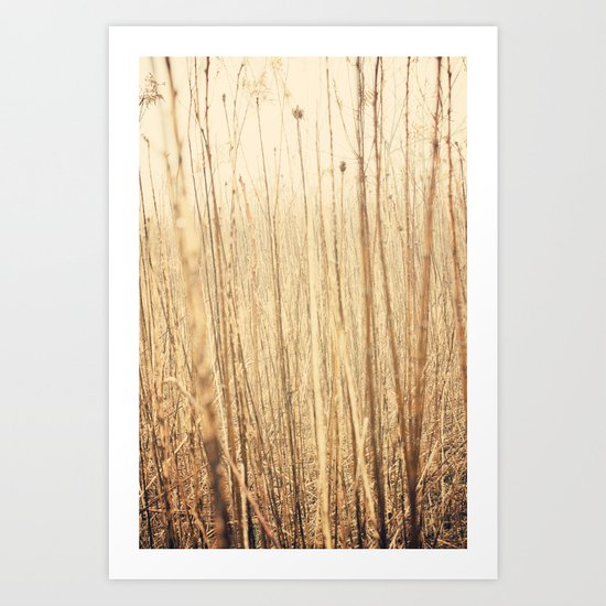Through the woods and fields Art Print