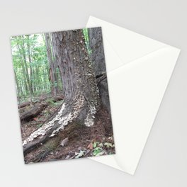 Mushroom On The Tree Bark Stationery Cards