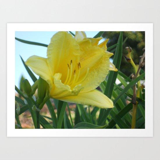 Hello Yellow Art Print