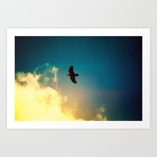 Raven Flight Art Print