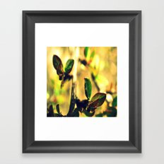 leaves # ## Framed Art Print