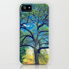 Gestalt iPhone Case