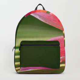 A Pure World Backpack