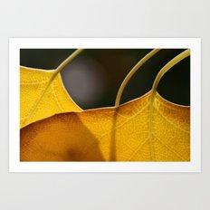 Autumn Veins  Art Print