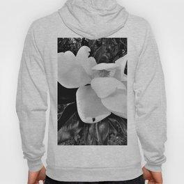 Magnolia Dreams Hoody