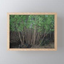 Water level mark. Framed Mini Art Print
