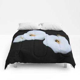 Three Calla Lilies Isolated On A Black Background Comforters
